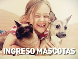 INGRESO MASCOTAS