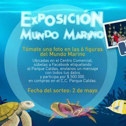 Exposición Mundo Marino